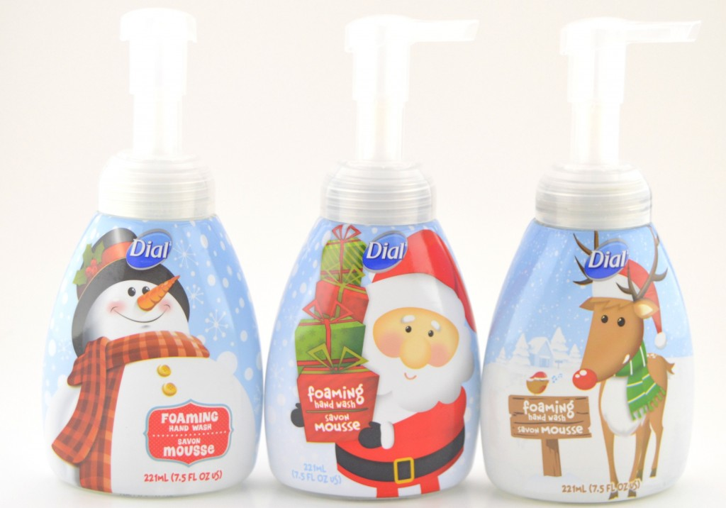 Dial Festive Foaming Hand Wash