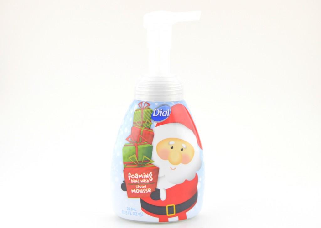 Dial Festive Foaming Hand Wash  (3)