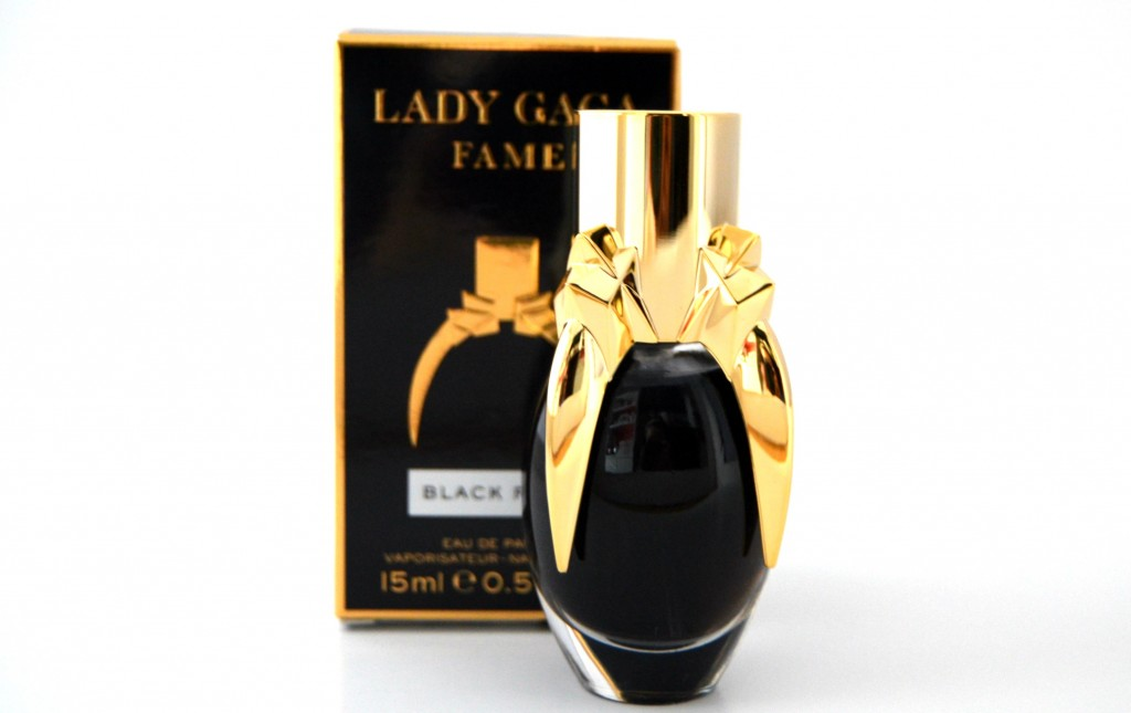 Lady Gaga Fame (1)