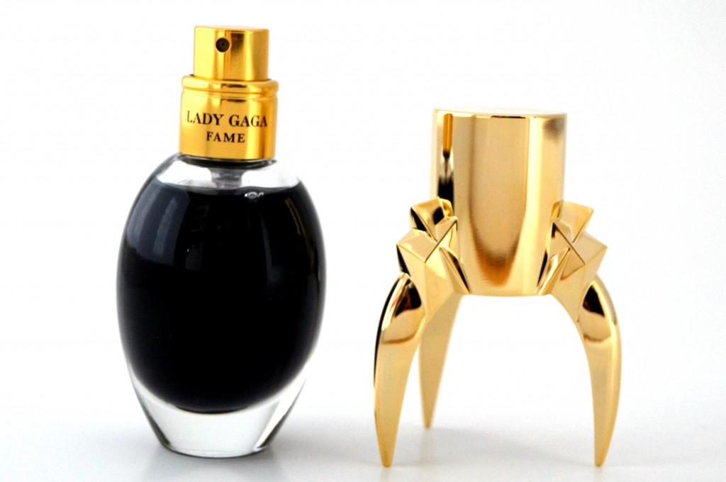 Lady Gaga Fame (3)
