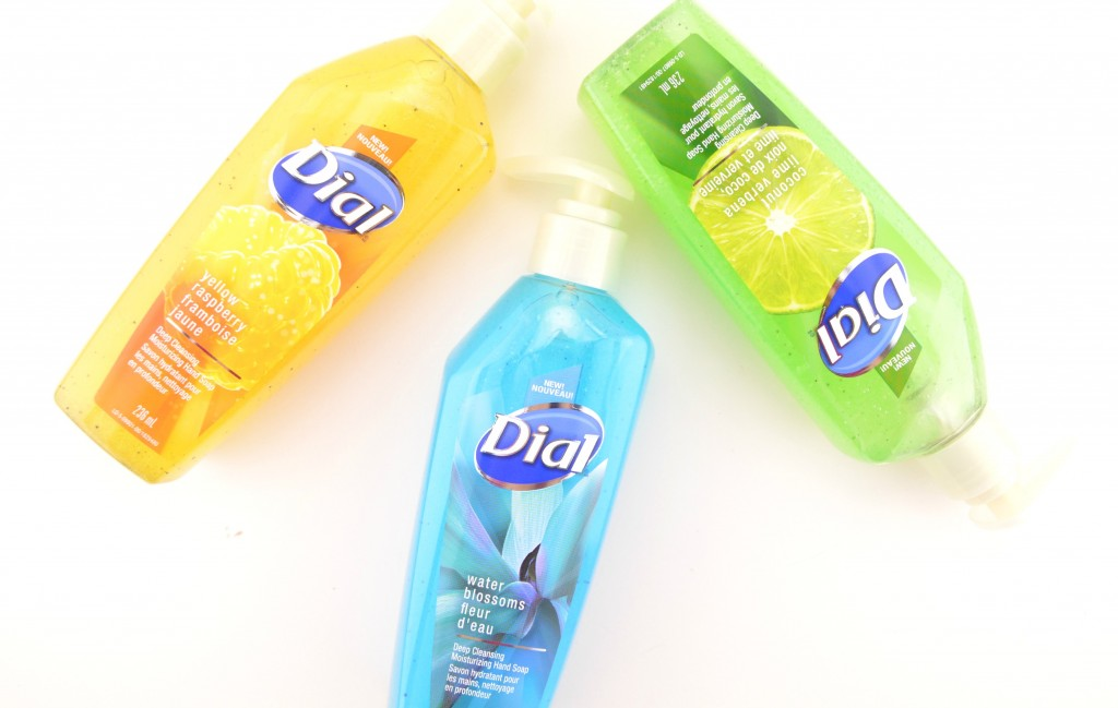 Dial Deep Cleansing Moisturizing Hand Soap (4)
