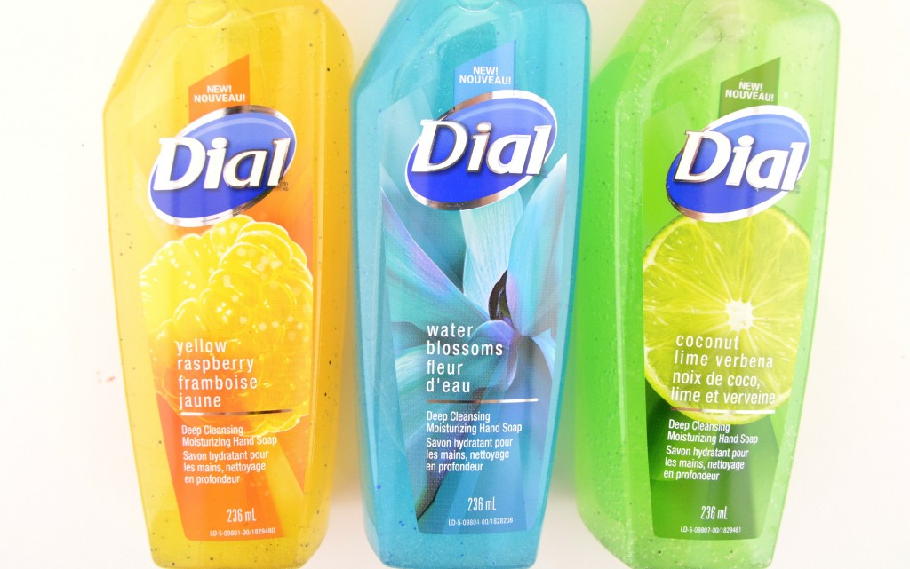 Dial Deep Cleansing Moisturizing Hand Soap (5)