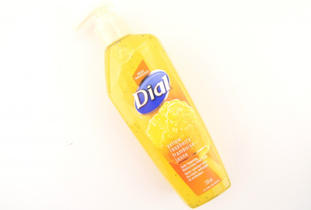 Dial Deep Cleansing Moisturizing Hand Soap (6)
