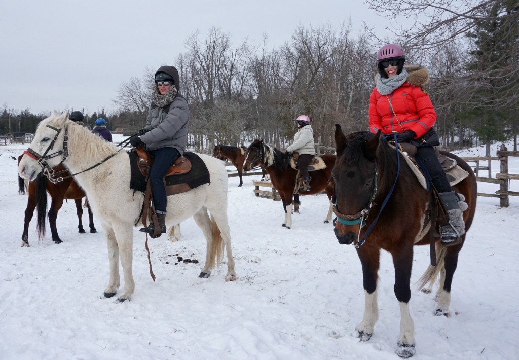 horseback riding, in the country, horses, fresh air, country side, riding, lover of animals