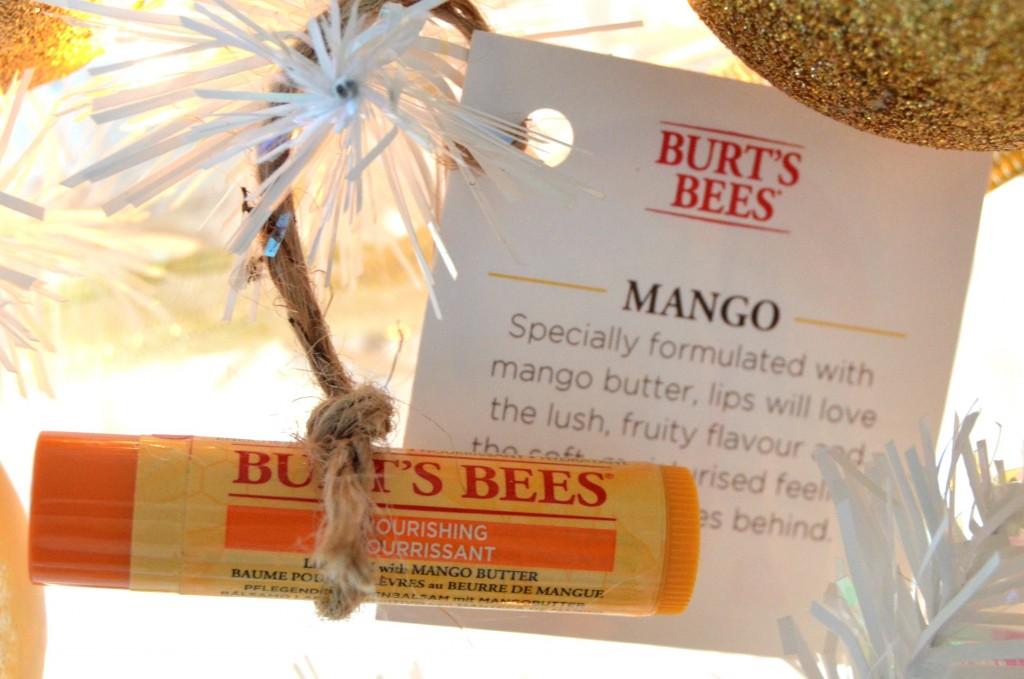Burt's Bees Mango Moisturizing Lip Balm