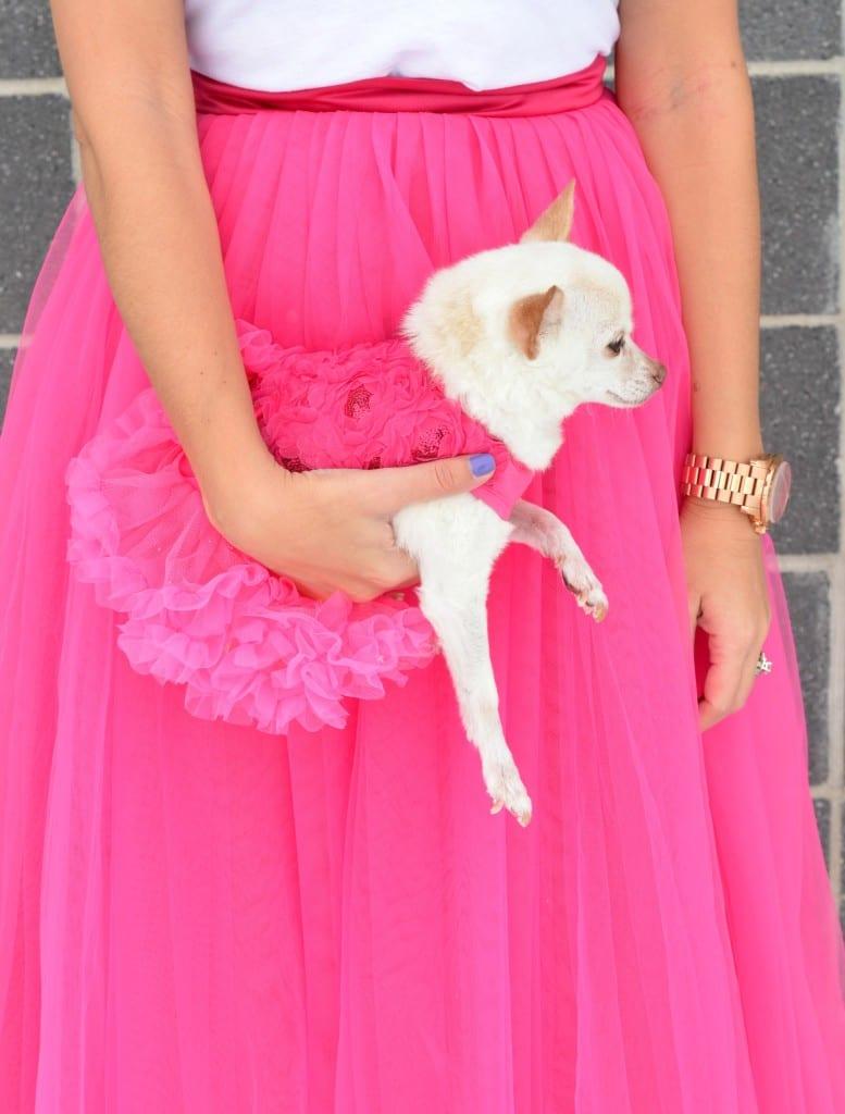 Pastel Dress Party  (11)
