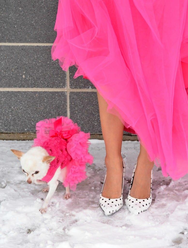 Pastel Dress Party  (14)