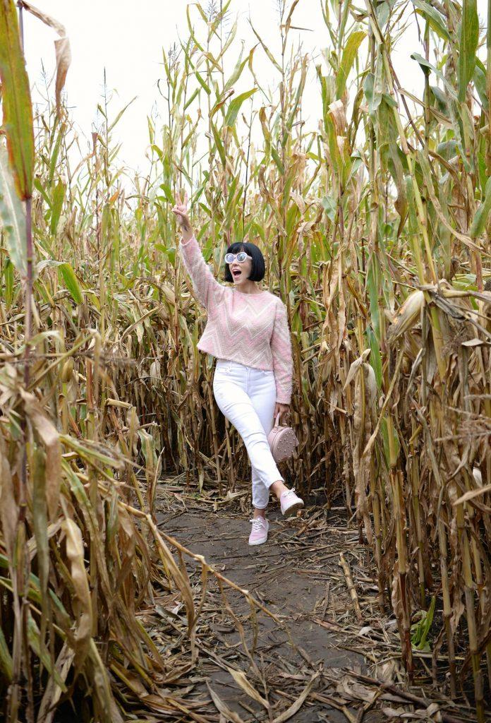 Attend Oktoberfest, haunted house, horror movie marathon, pumpkin patch, halloween party