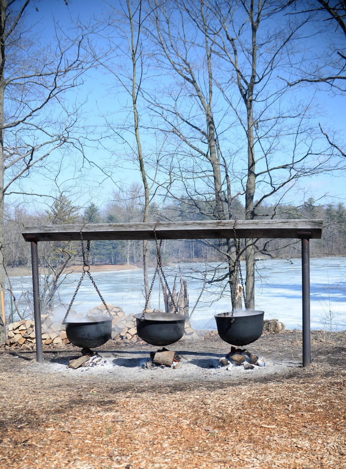 Tap into Ontario Maple Syrup Festivals (8)