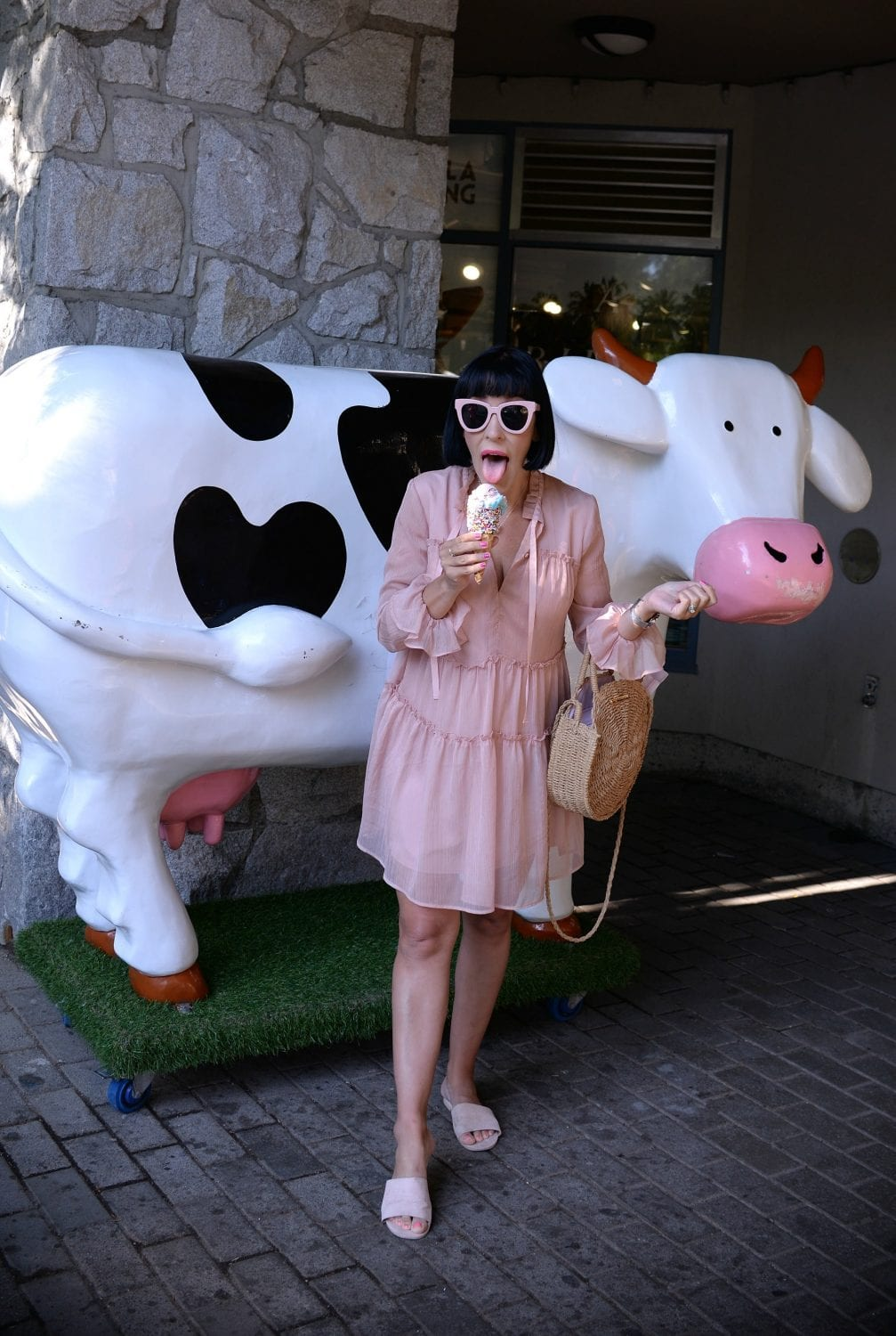 Crazy Cow Ice Cream